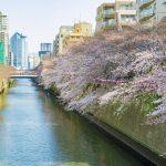 東京出張・滞在にオススメの目黒のマンスリーマンション特集!通勤・生活しやすい目黒に住む